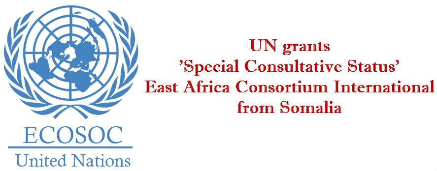 1483078394_UN-grants-Special-Consultative-Status-to-Minhaj-ul-Quran-International